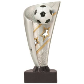 Angelo Awards can easily customize any sports award or trophy you need