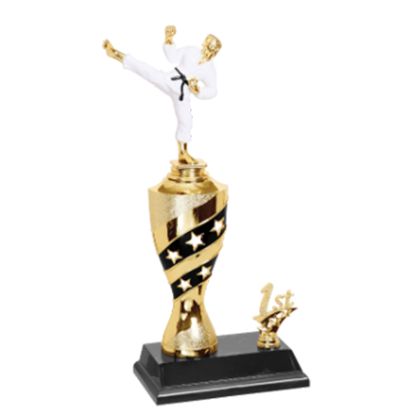 Black and Gold Martial Arts Trophy