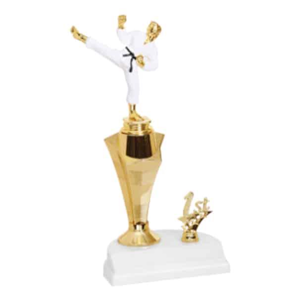 Color Martial Arts Trophy