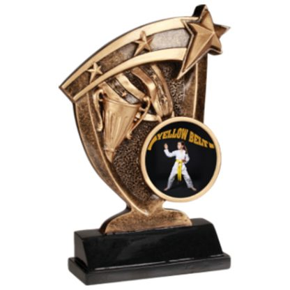 Custom Graphic Broadcast Martial Arts Resin Award