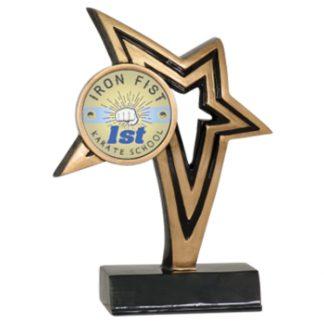 Custom Graphic Infinity Star Martial Arts Resin Award