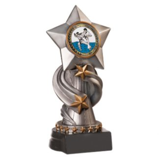 Encore Star Martial Arts Resin Award With Insert
