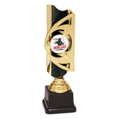 Martial Arts Custom Graphic Triumph Award