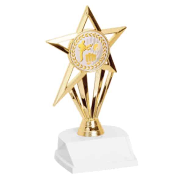 Martial Arts Star Trophy