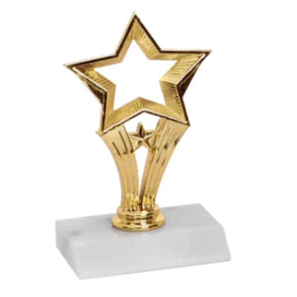 Open Star Trophy