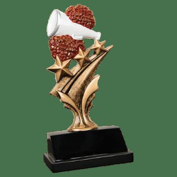Tri Star Cheerleading Award
